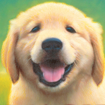 001-goldie-ellen-miles-the-puppy-place-books-series-number-01-9780439793797-square-crop-200px