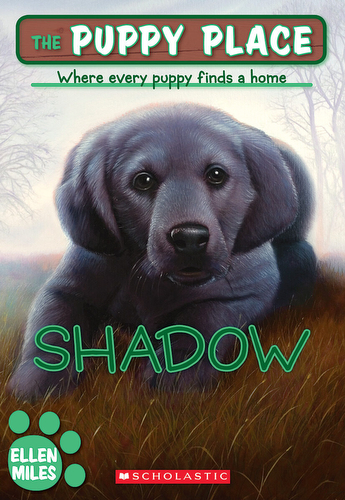 003-shadow-ellen-miles-the-puppy-place-books-series-number-03-9781435206267