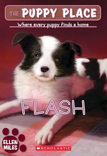 006-flash-ellen-miles-the-puppy-place-books-series-number-06-9780439874113