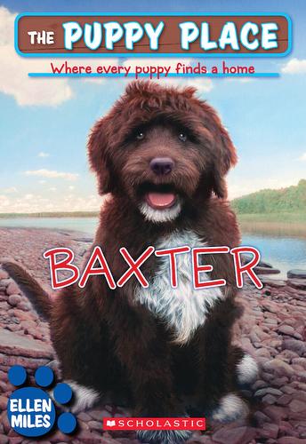 019-baxter-ellen-miles-the-puppy-place-books-series-number-19-9780545217989