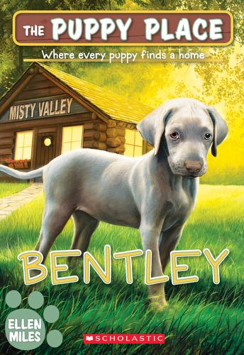 053-bentley-ellen-miles-the-puppy-place-books-series-number-53-9781338303025